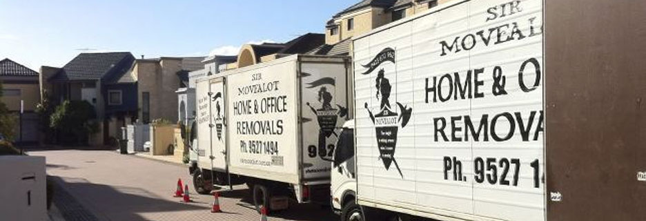 albany removals